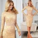 Volle Spitze-Dame-elegante langärmliges Kleid